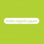 molllis